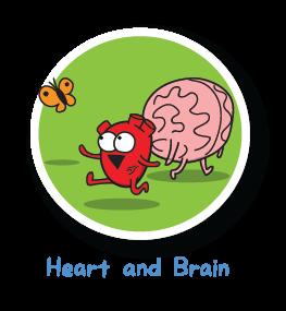 heart-and-brain
